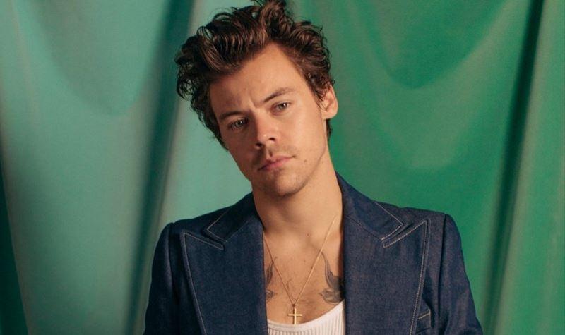 Terá Harry Styles um TikTok secreto?