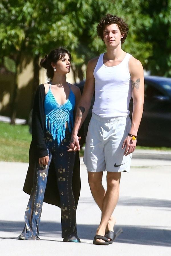"""Shawn Mendes e Camila Cabello numa """"discussão intensa"""""""